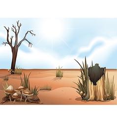 A desert vector image