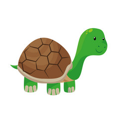 cute turtle pet isolated icon vector image