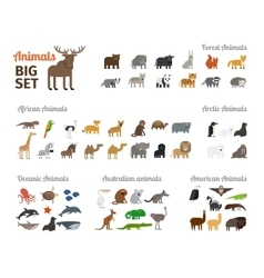 Animals in flat style vector
