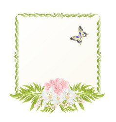 Frame cherry blossom and jasmine with butterflies vector
