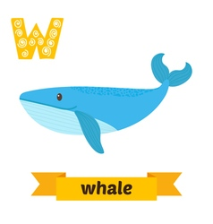 Whale w letter cute children animal alphabet in vector