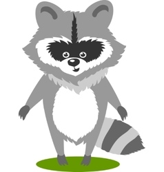 Character Cute Racoon vector image