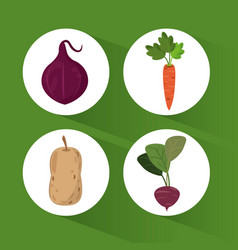 set organic healthy food vector image