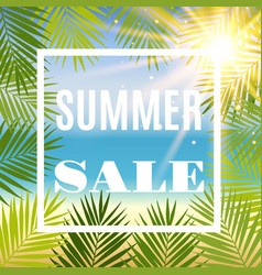 summer sale background with palm and sun vector image vector image
