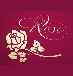 Elegant golden rose graphic element vector