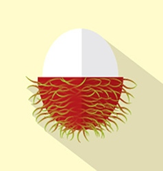 Flat design rambutan icon vector