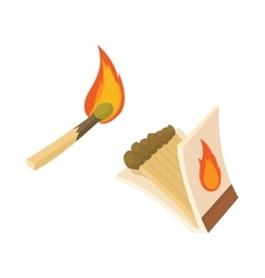 Box of matches and burning match icon vector