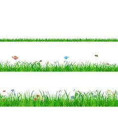 Green grass backgrounds borders with flowers vector
