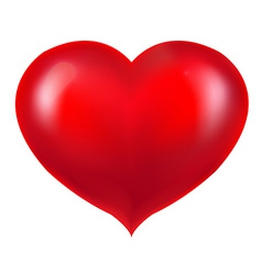 Realistic Red Heart vector image vector image