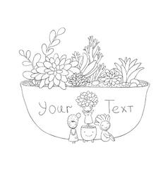 Beautiful succulents in pot Little fairy vector image