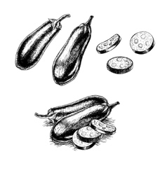 Hand drawn set of eggplant sketch vector