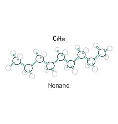 C9H20 Nonane molecule vector image vector image