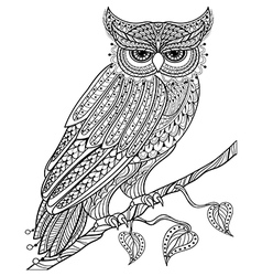 Hand drawn magic owl sitting on branch for adult vector