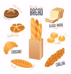 set of cartoon food bread bread buns vector image