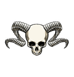 skull with horns vector image
