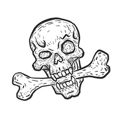 Skull with bone vector