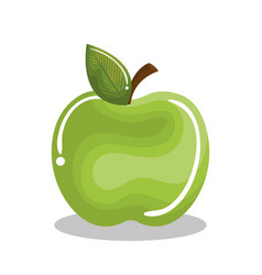 Apple fruit isolated icon vector