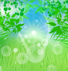 Spring time vector