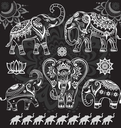 Set of decorated elephants on black vector image vector image