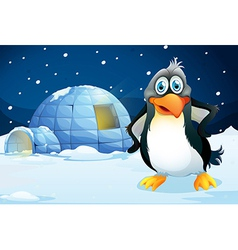 A penguin standing near the igloo vector