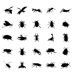 Beetles silhouettes set vector