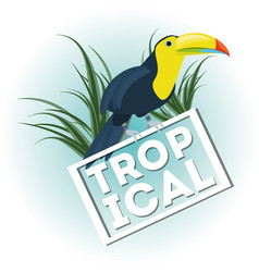 Beautiful toucan over tropical palms vector