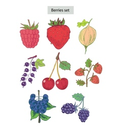 Berries set detailed vector