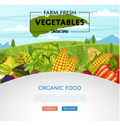 farm fresh vegetable banner with rural landscape vector image