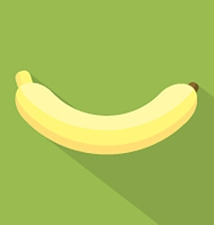 Flat Design Banana Icon vector image