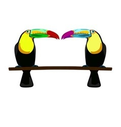 two toucans on white background vector image vector image