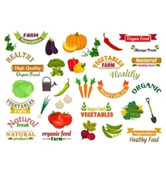 Vegetables vegetarian emblems ribbons set vector