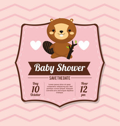 Baby shower card invitation beauty beaver vector