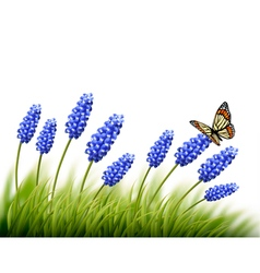 Beautiful lavender background with a butterfly vector