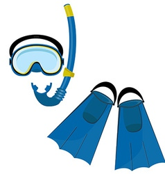 Blue swimming equipment vector image vector image