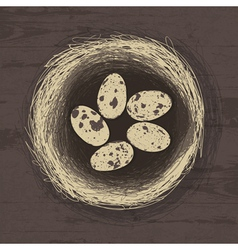 Eggs in nest on wooden texture vector
