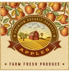 Vintage colorful apple harvest label vector