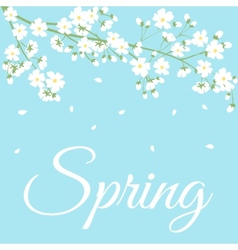 Spring flowers on tree branch vector