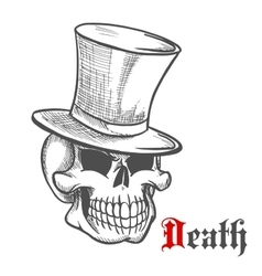 Elegant mister skull in vintage top hat sketch vector