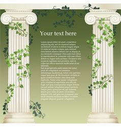 Ionic columns vector image