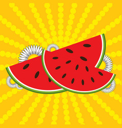 red watermelon slices and flowers vector image vector image