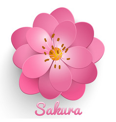 Isolated paper cut sakura flower vector