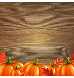 Red Autumn Leafs And Pumpkins Frame vector image