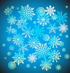 Christmas snowflakes snow winter holiday ornament vector image