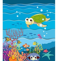Underwater scene with turtle and fish vector image vector image