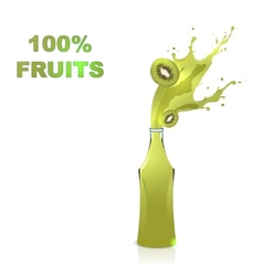 Fruits juices collection  Kiwi vector image