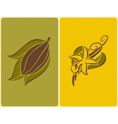 Cocoa bean and vanilla pods vector