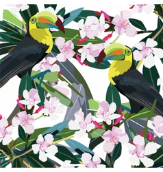 Toucan parrot and pink flowers branch vector