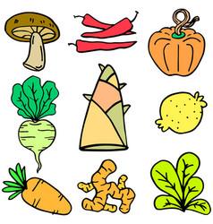vegetable set doodles vector image vector image