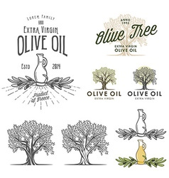 Olive oil labels and design elements vector