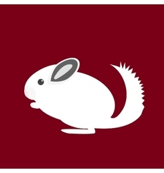 Chinchilla vector image